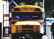 New York Motor Vehicle Accident lawyers report a school bus was struck in Yaphank!