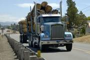 Pennsylvania woman killed in logging truck crash