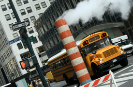 Long Island crash: Pickup hits school buses, 1 dead
