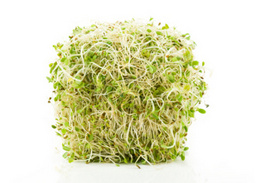FDA announcement: Specialty Farms LLC recalls organic sprouts products