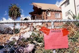 Family Dog Crawls Home On Broken Legs After Surviving Alabama Tornado