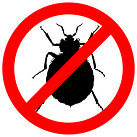 CDC Report: Illnesses, Deaths Caused by Bed Bug Insecticides