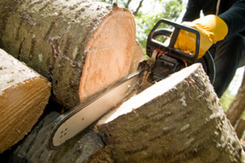Tree-Cutting Workplace Accident Injures Knoll Club Worker